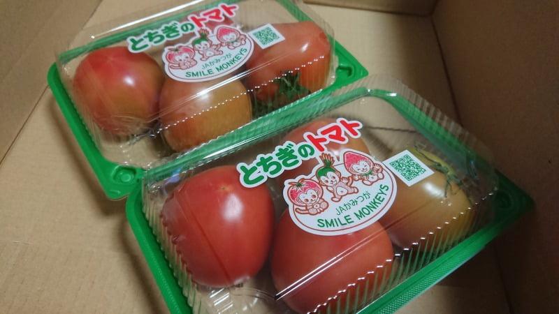 栃木のトマト